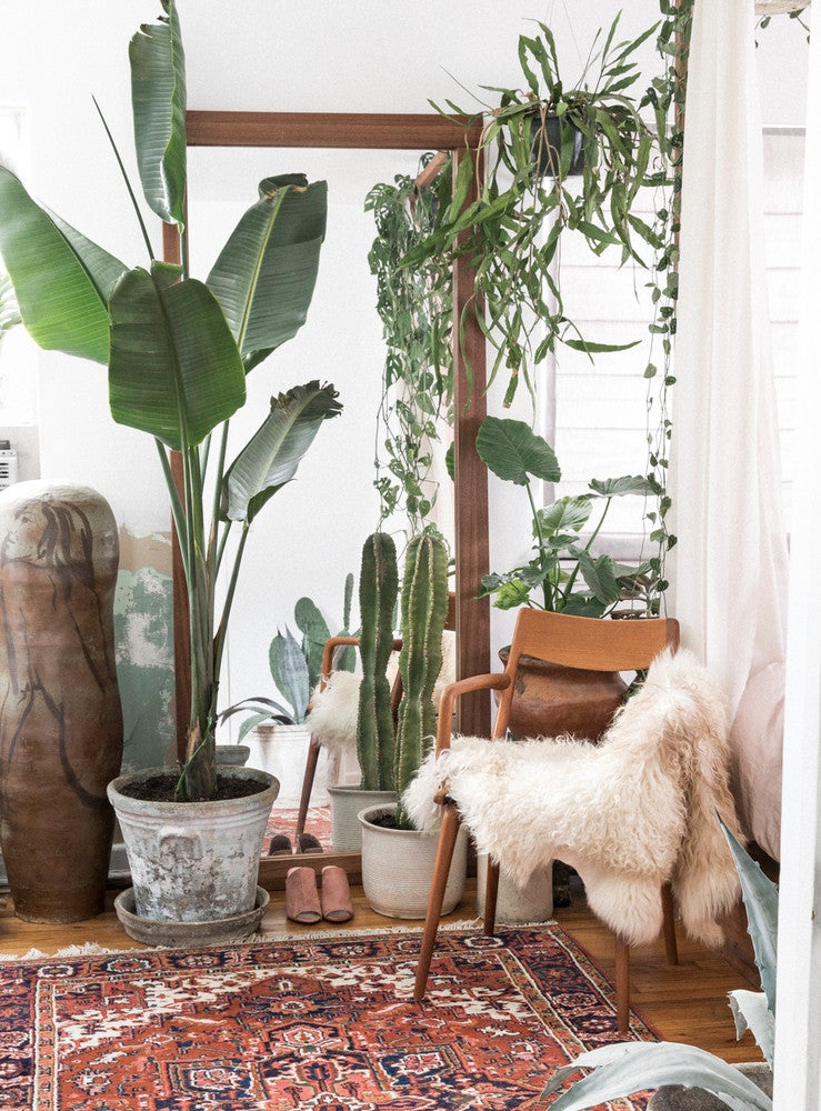 One Couple Turned a 650-Square-Foot Rental into a Plant-Filled Boho Oasis