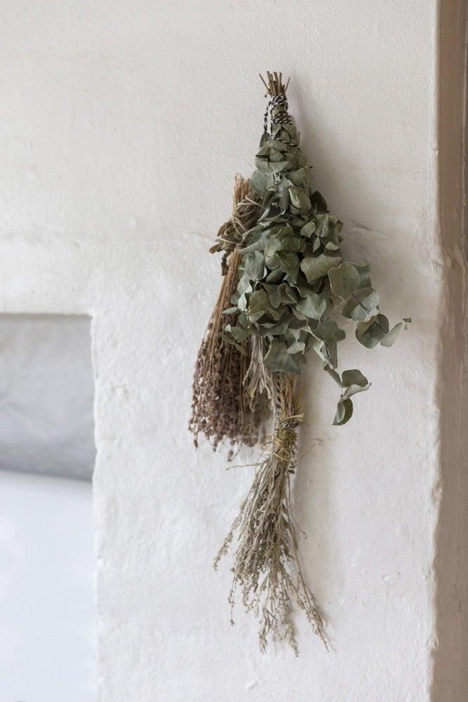 plants hanging wall