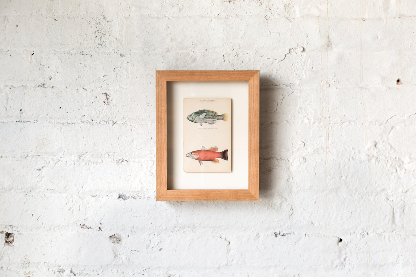 This Is the Only Collection of Solid Hardwood Frames Currently on the Market