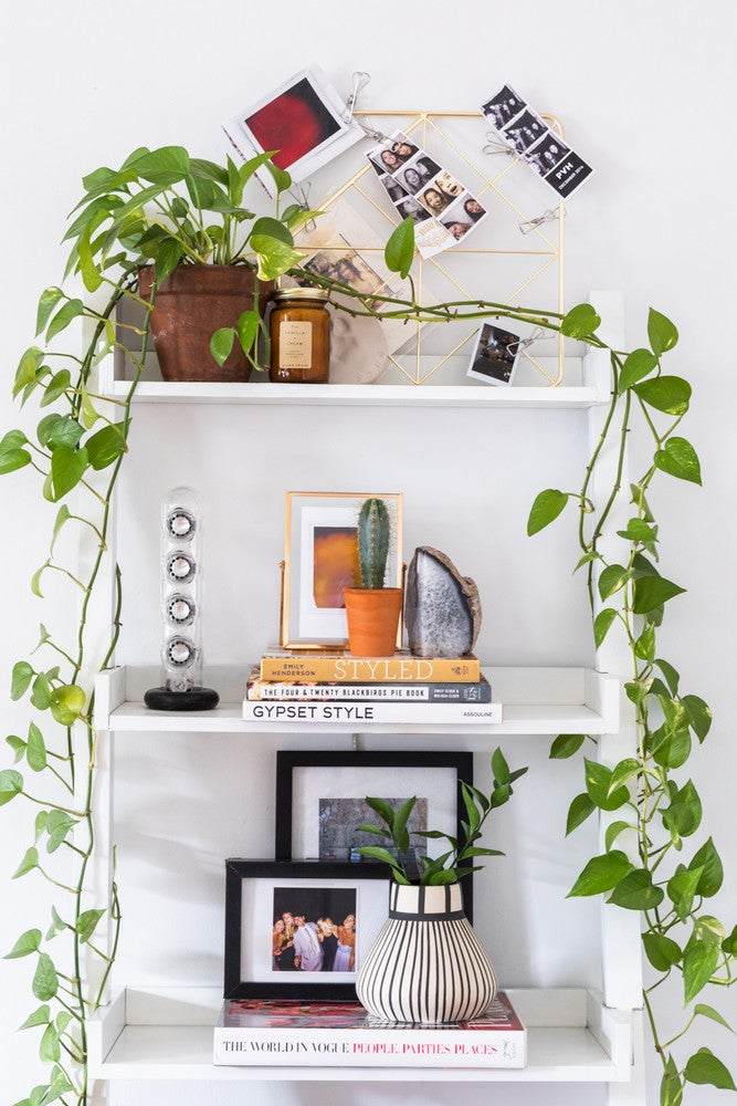 Peek Inside a Dreamy, Green Oasis Reinventing Boho Chic
