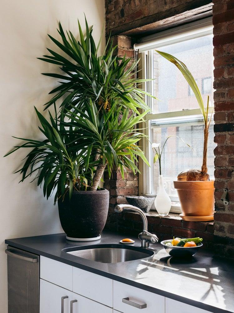 A Crash Course in Choosing Kitchen Countertops