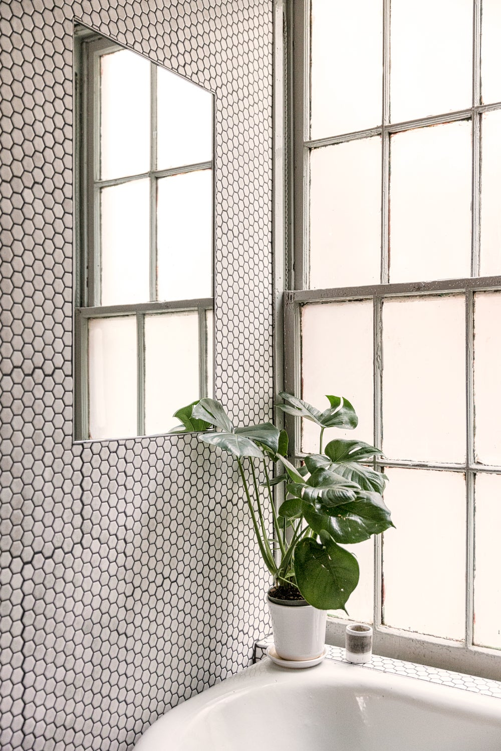 clean_grout_photo_by_AaronBengochea_03
