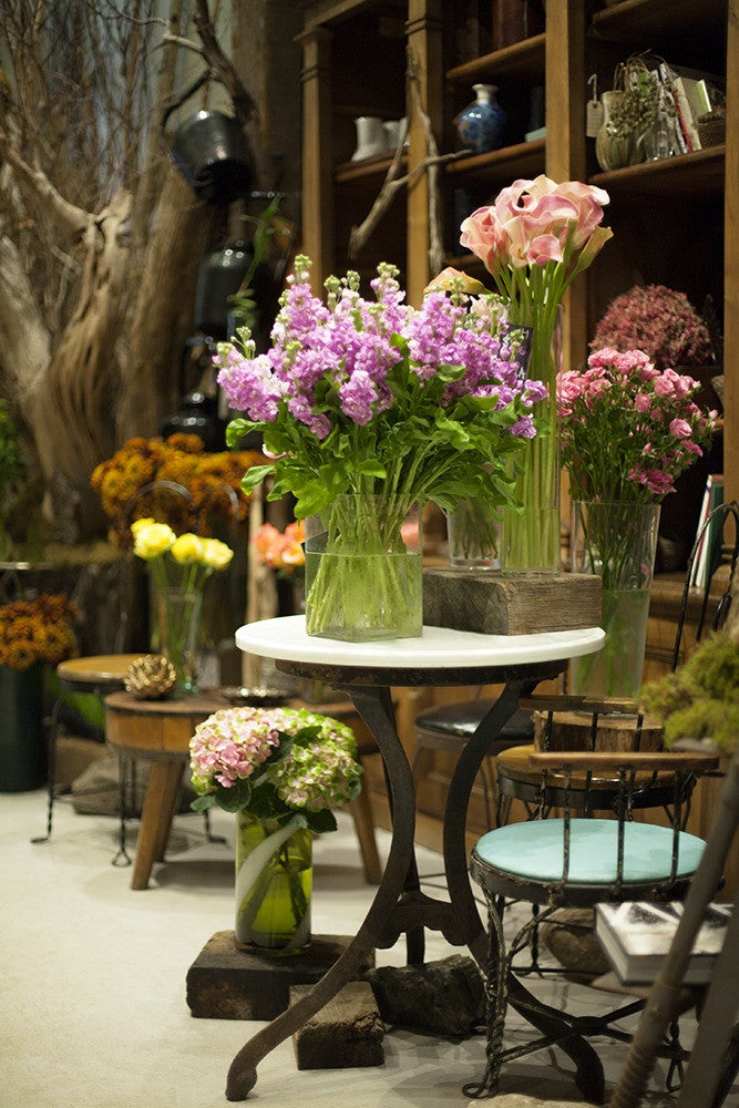 domino on the town: fleurs bella