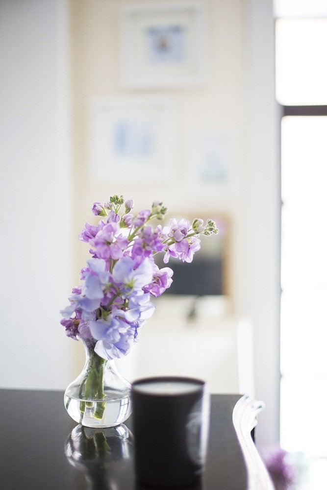 Amy Stone Purple and White Vignette