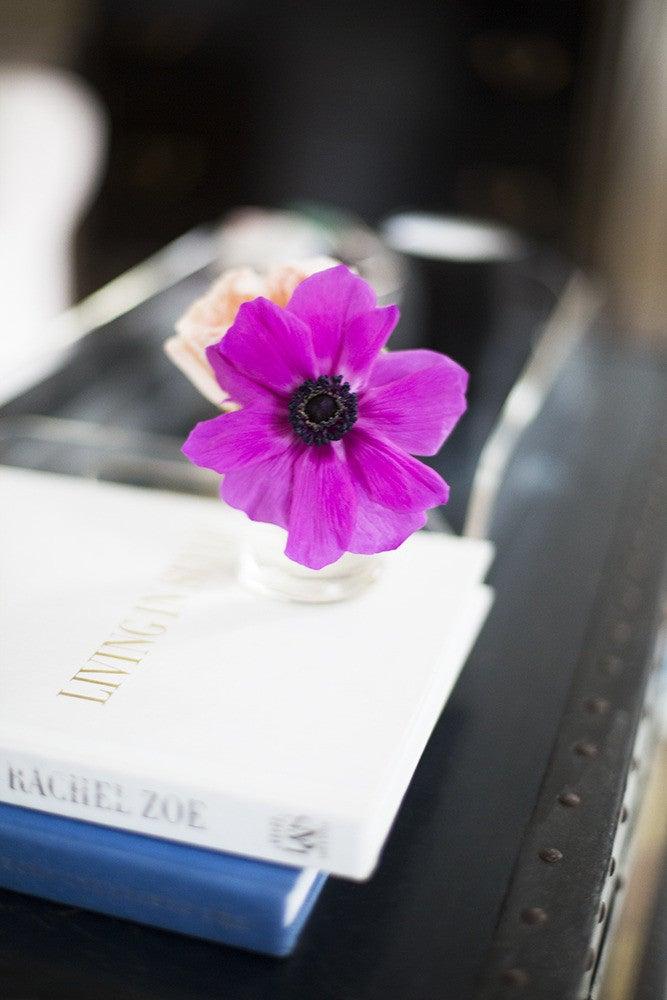 Amy Stone Purple Vignette