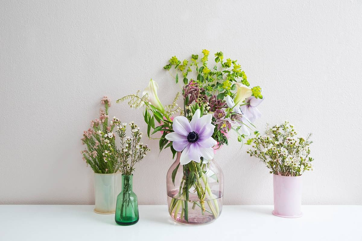 Green and Pink and Purple Flowers