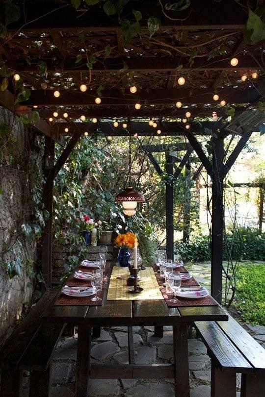Patio String Light Ideas Under Deck Plant Life