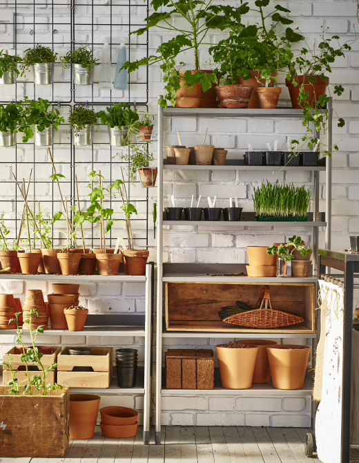 Urban Garden Ideas And Inspiration For City Apartments