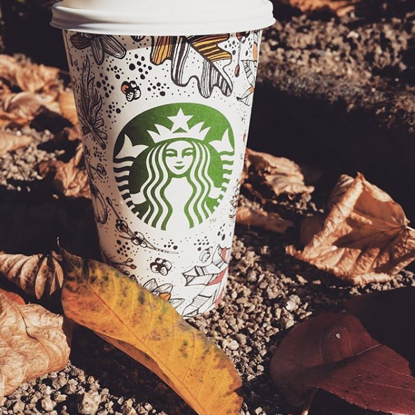 Basic Things To Do In The Fall PSL Fall Leaves