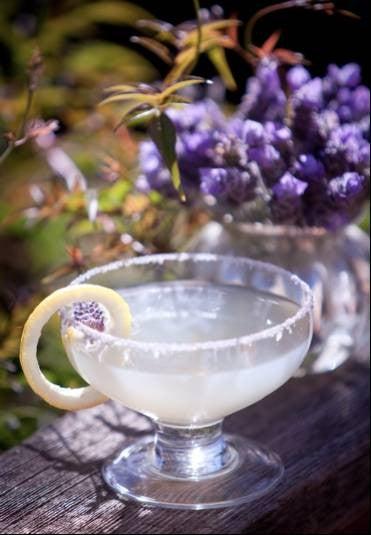 lavender-drink