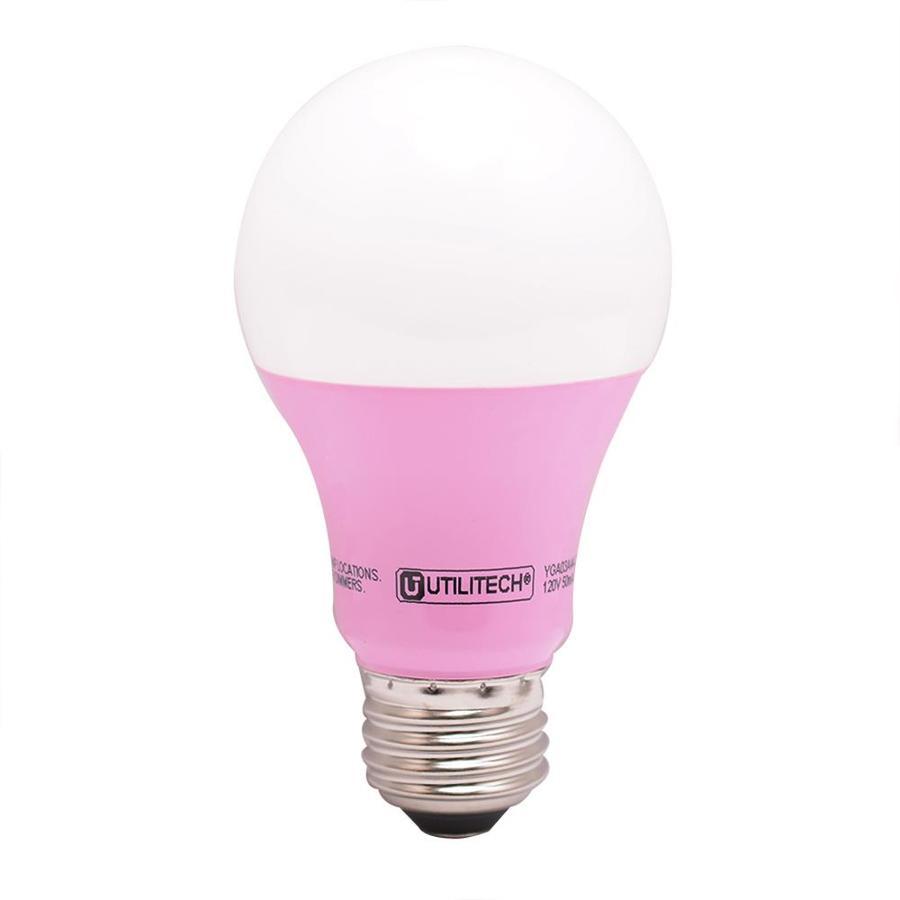pink bulb