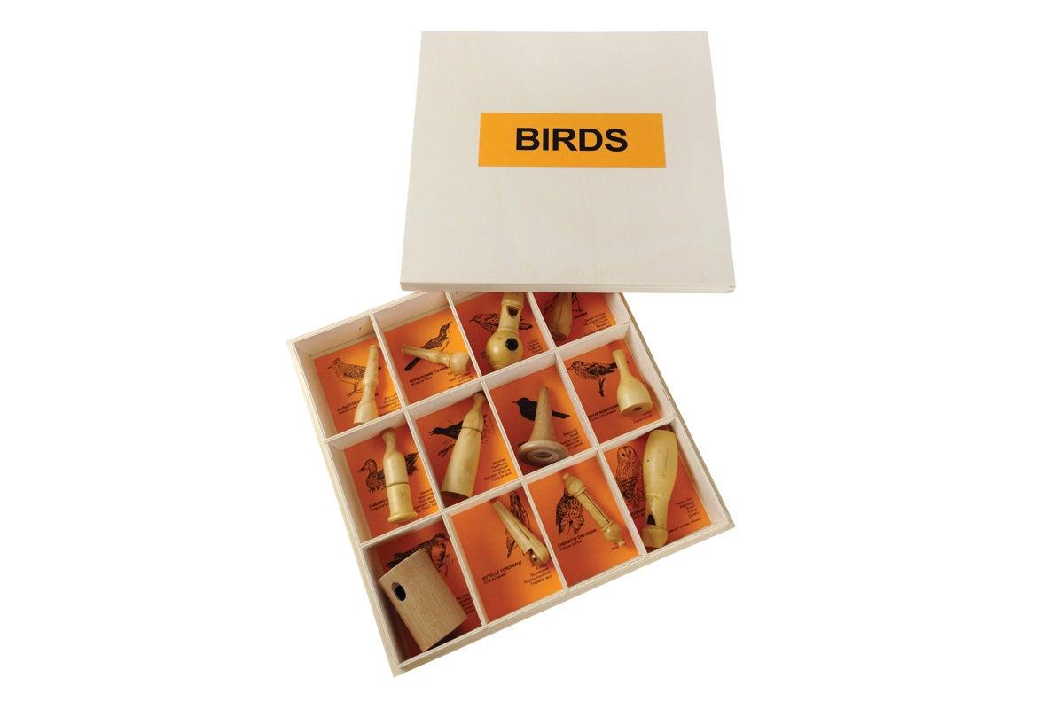 15 bird