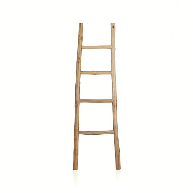 crate and barrel ladder
