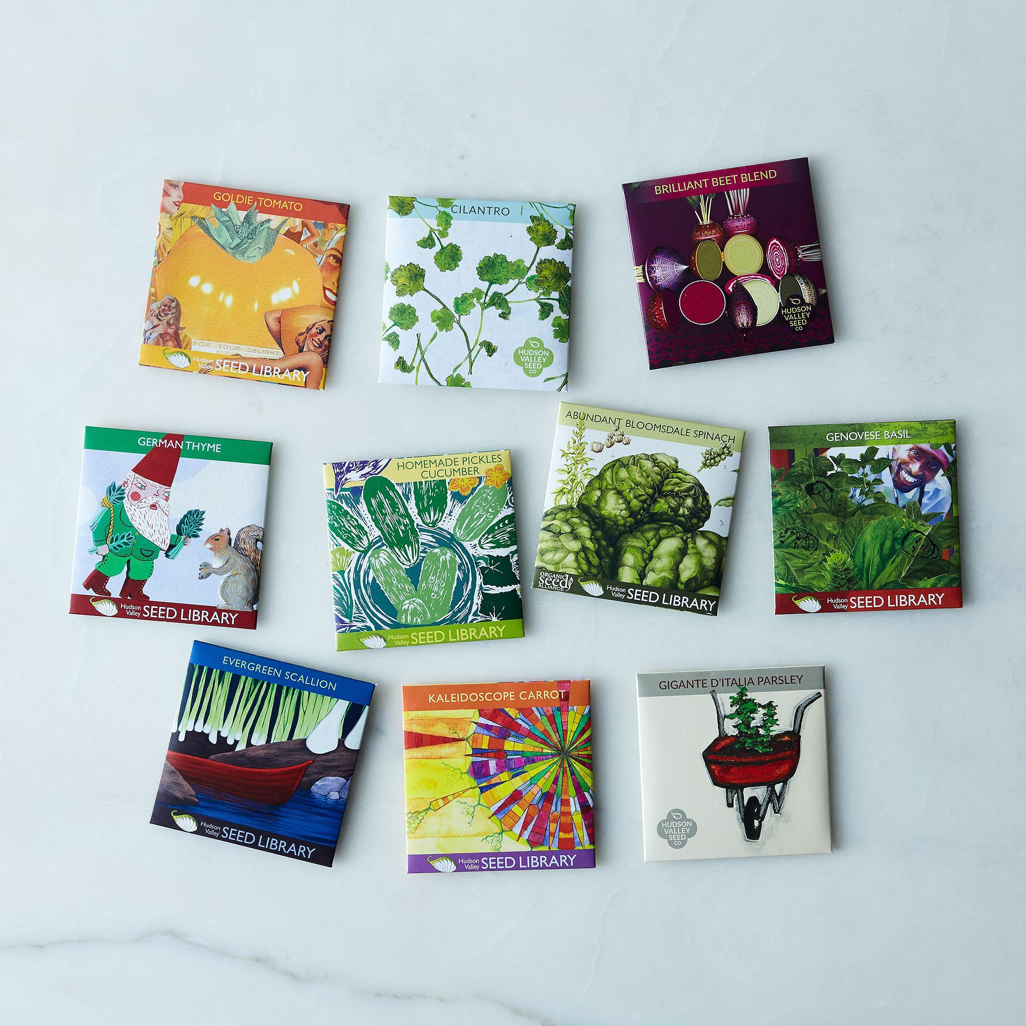 Herb _ Vegetable Seeds (Set of 10)