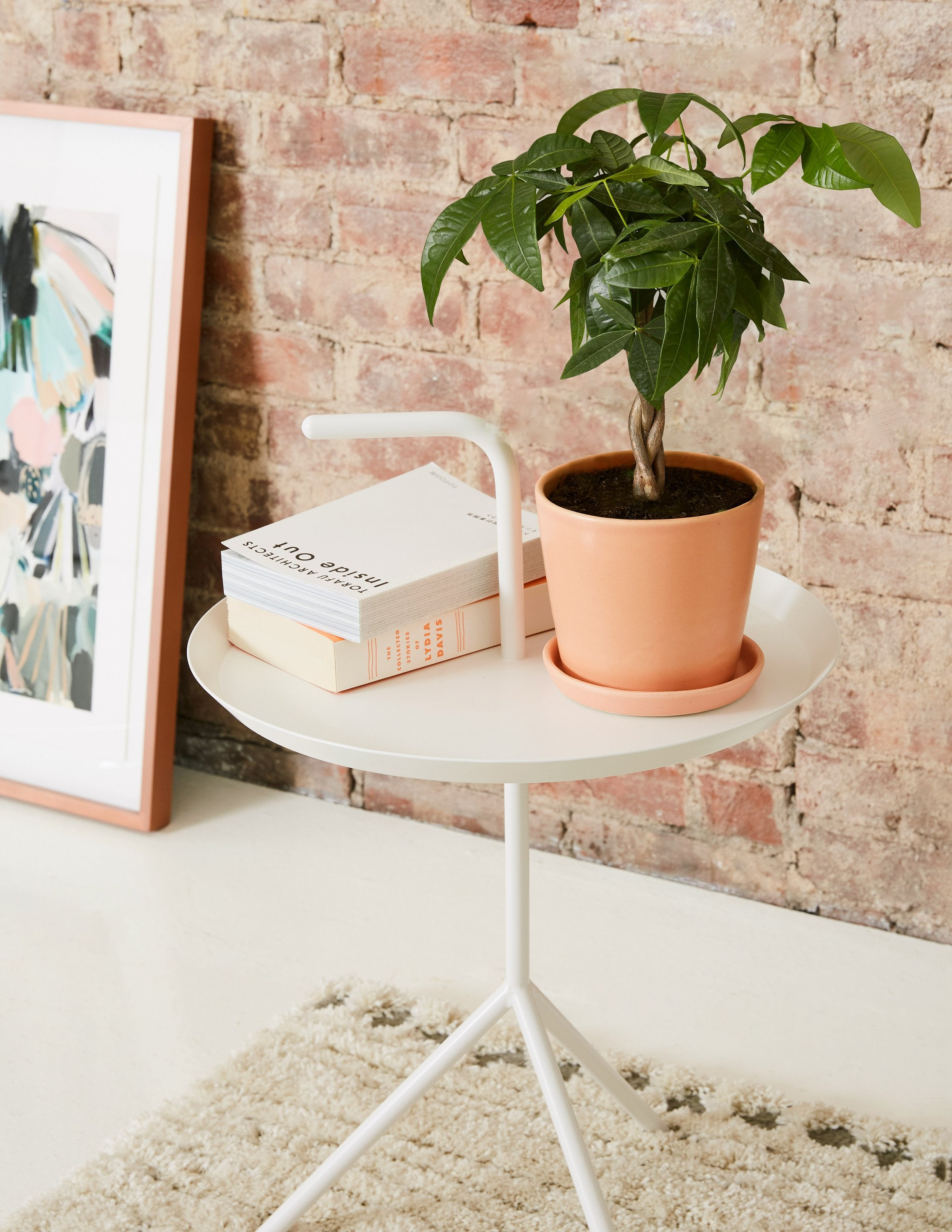 FEATURED Vgallery_the-sill_moneytree_august_2230x.progressive
