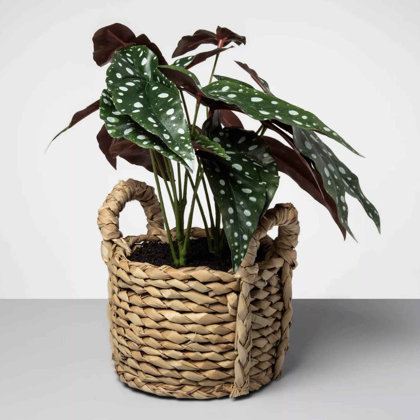 Artificial Dotted Begonia Plant
