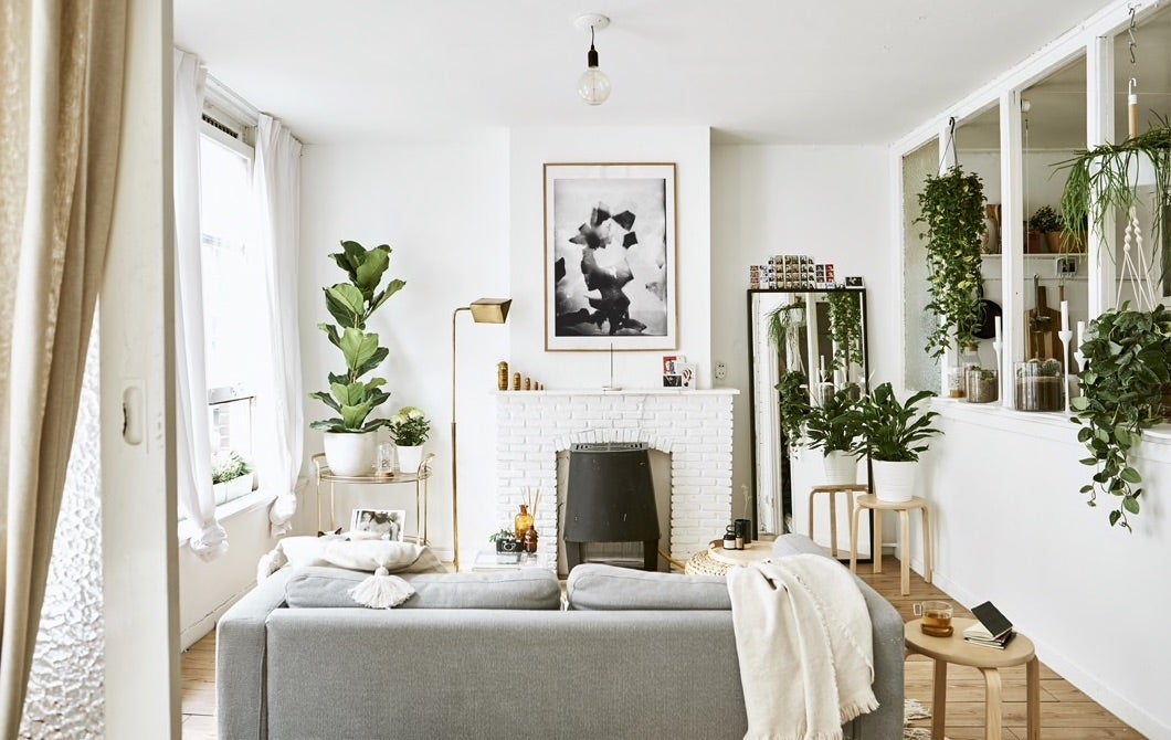 Change the position of your sofa to divide an open-plan home into zones__201931_idip10a_07_PH158805