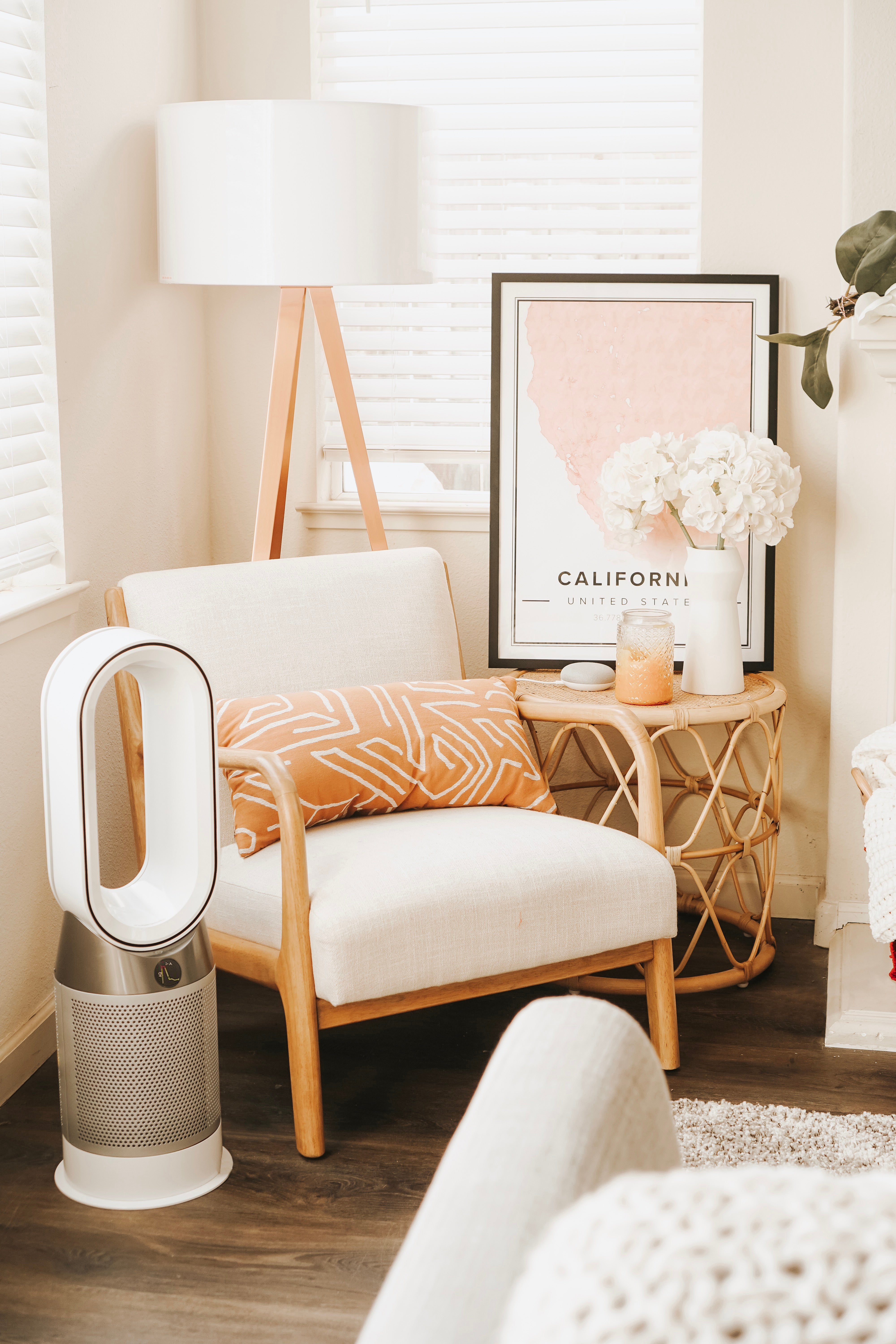 What Happens to Your Body When You Use an Air Purifier for a Month