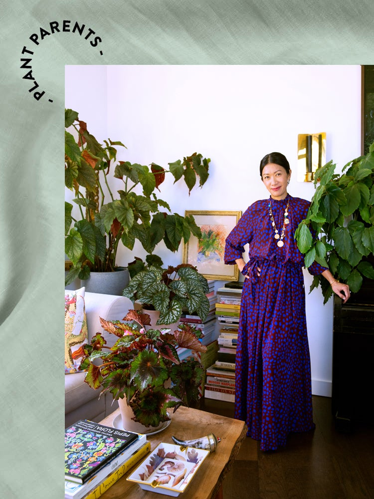 How Domino's Creative Director Tends to Her Apartment Full of Plants