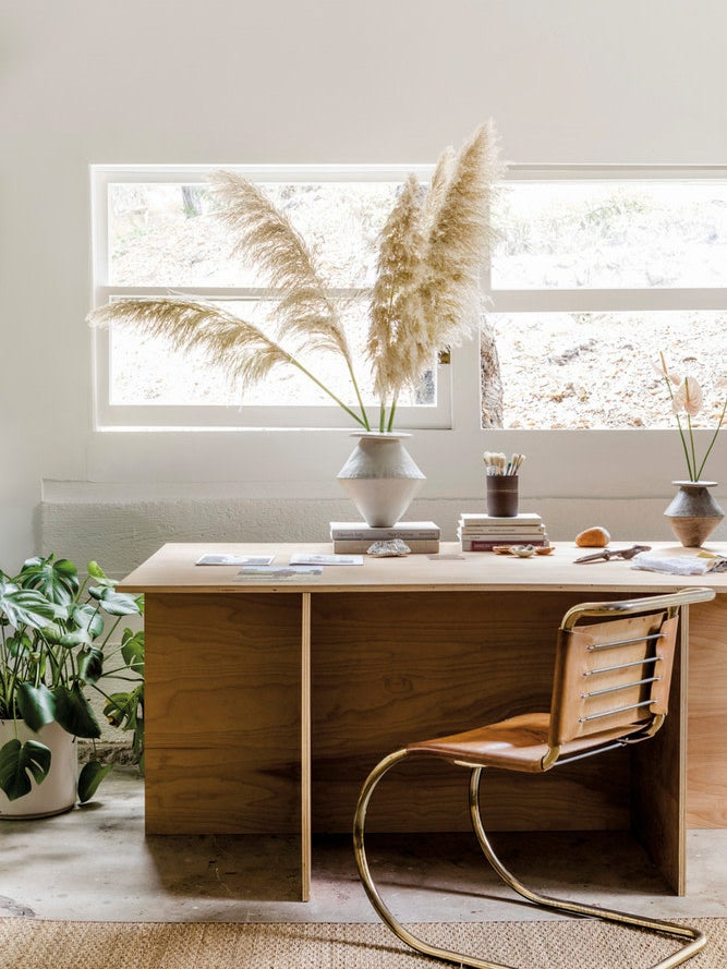 office with pampas grass in a vase