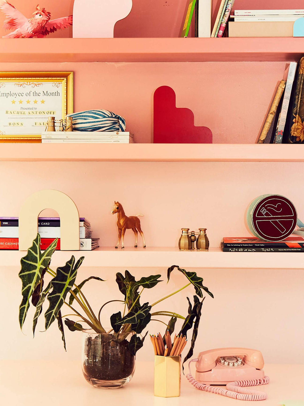 ombre-pink-shelves