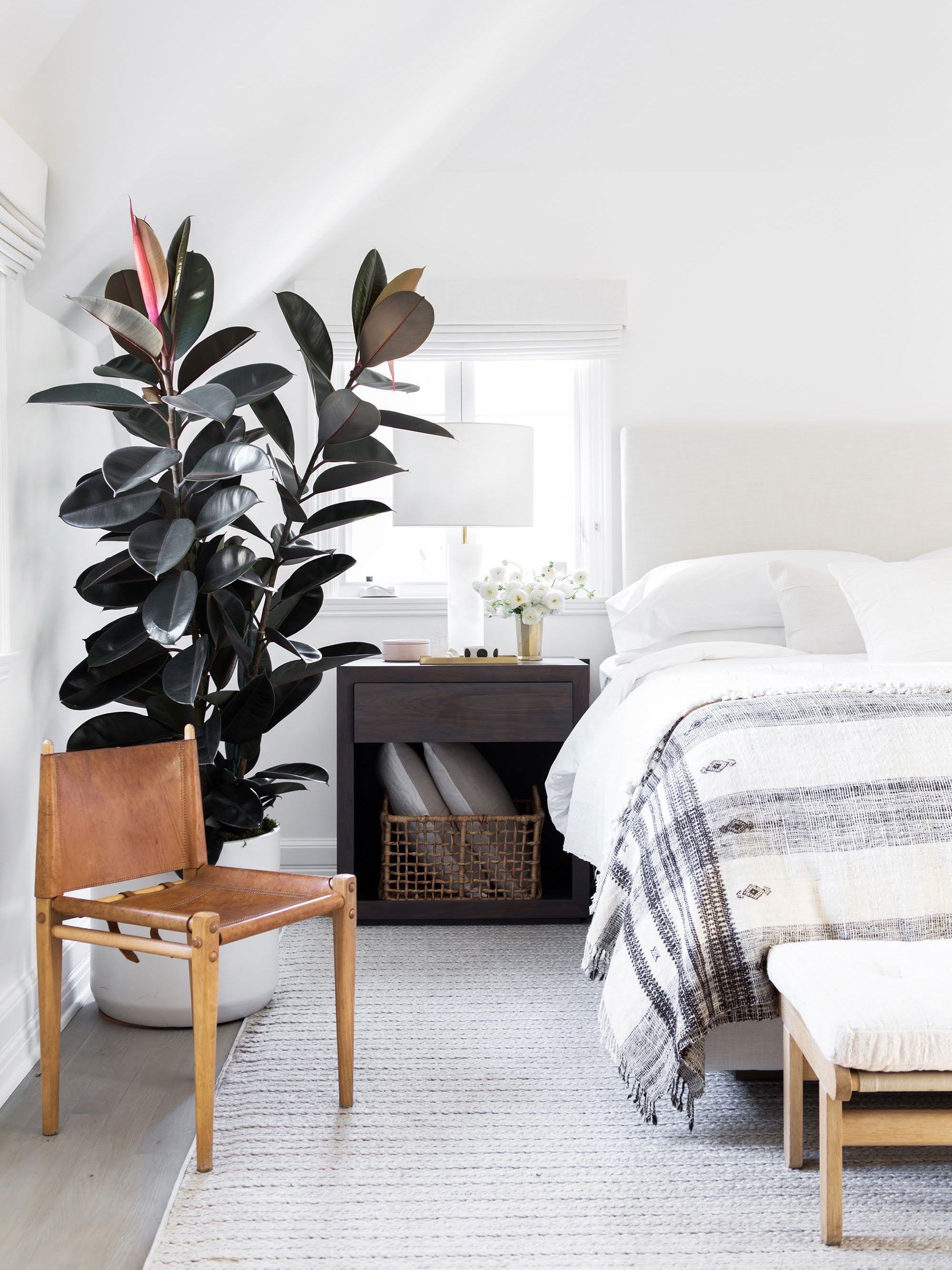 White bedroom with large rubber plant