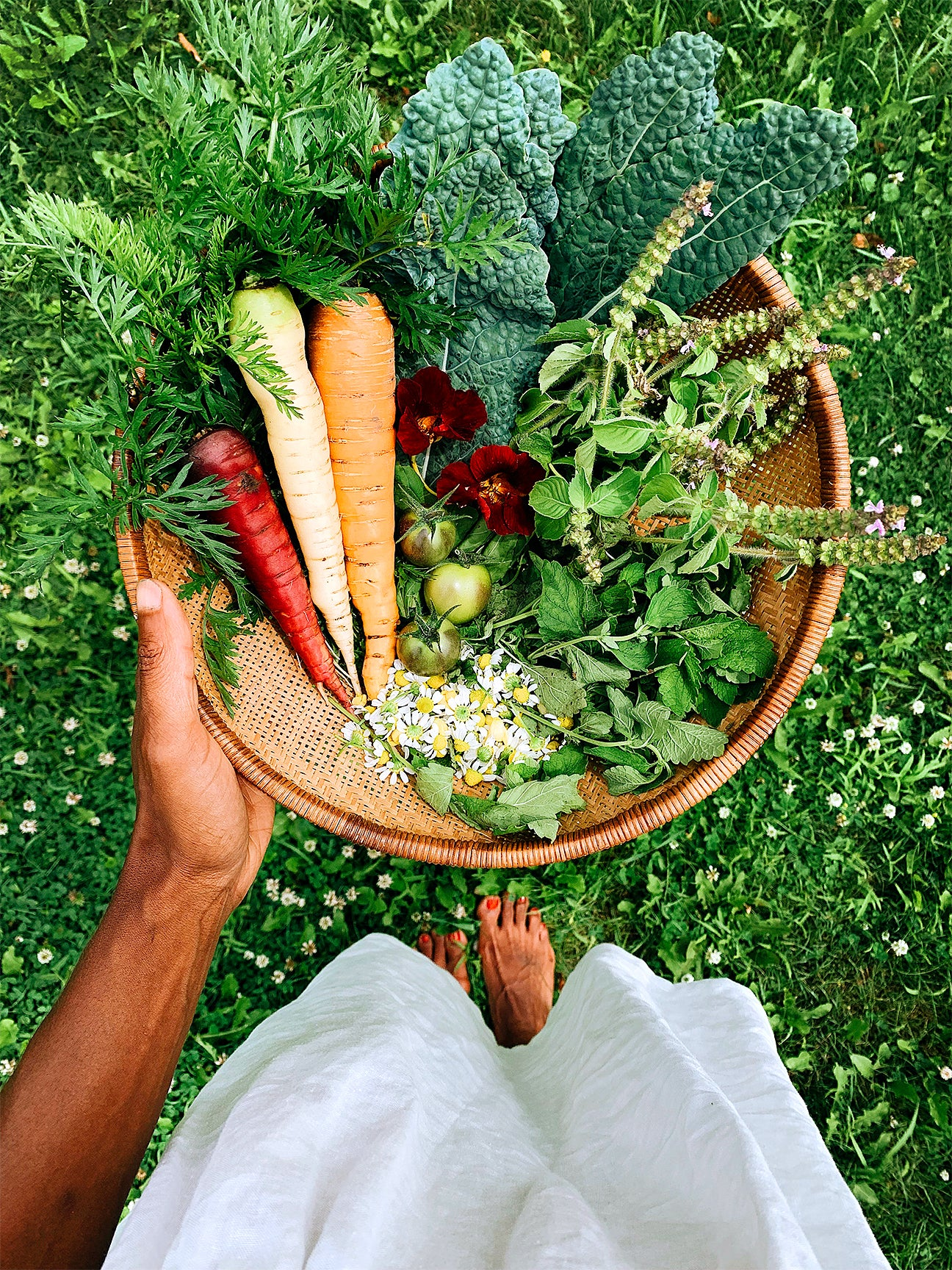 Woman's hand holding a bowl of freshly picked carrots and herbs