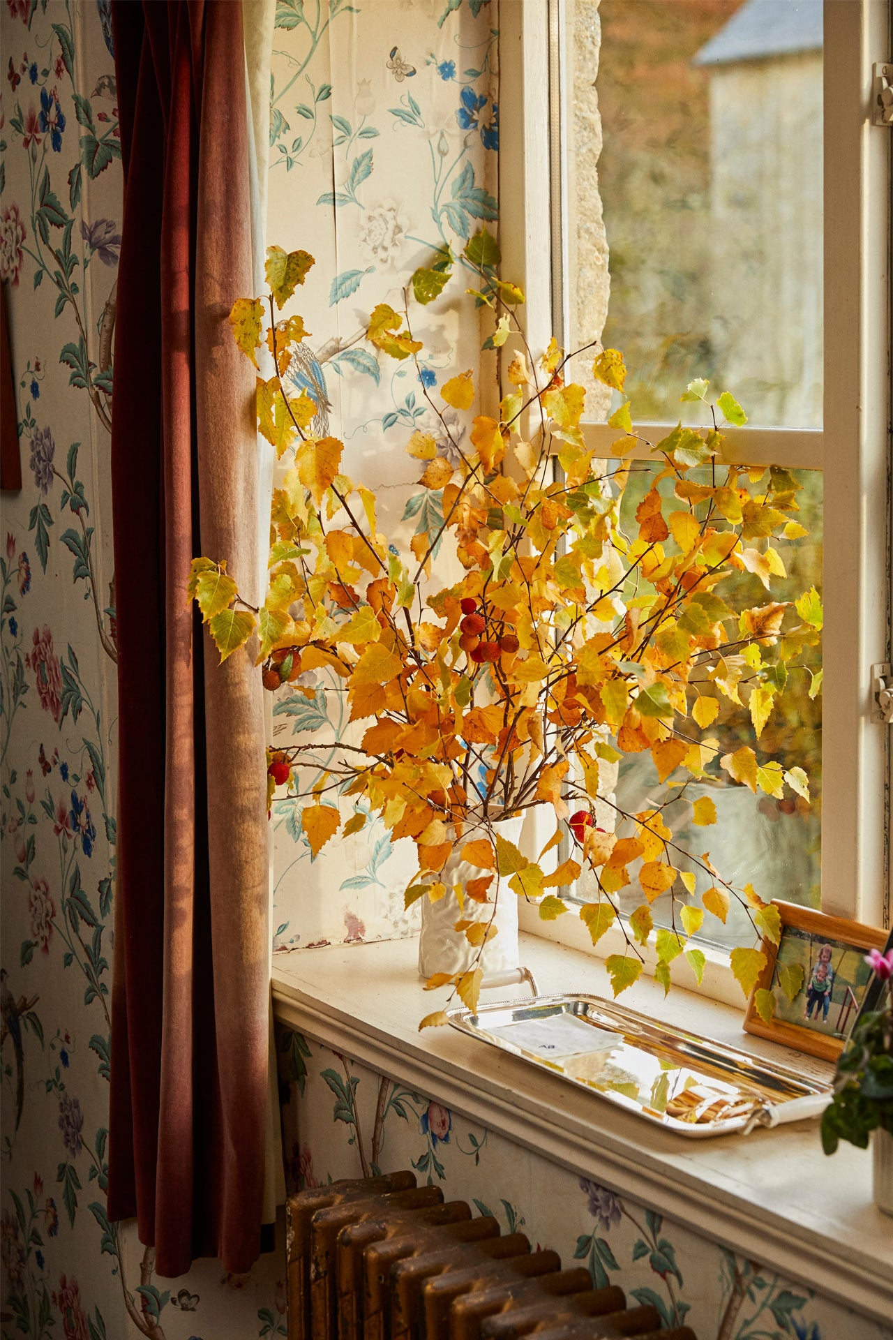 golden yellow leaves on a windowsill