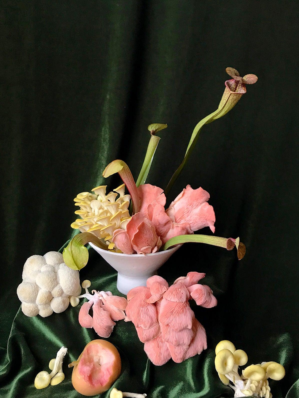 00-FEATURE-mushroom-florals-domino