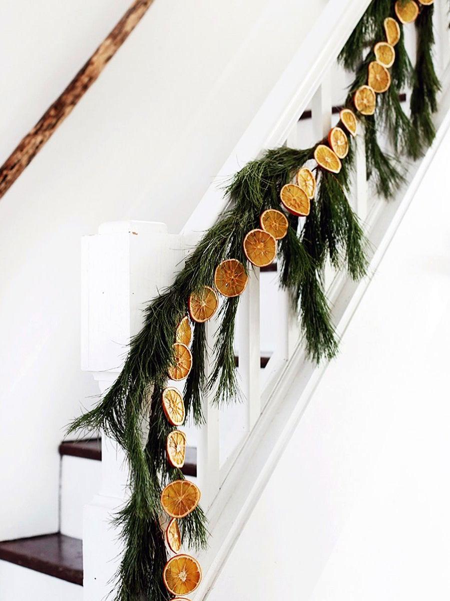 trader-joes-citrus-holiday-decorating-domino