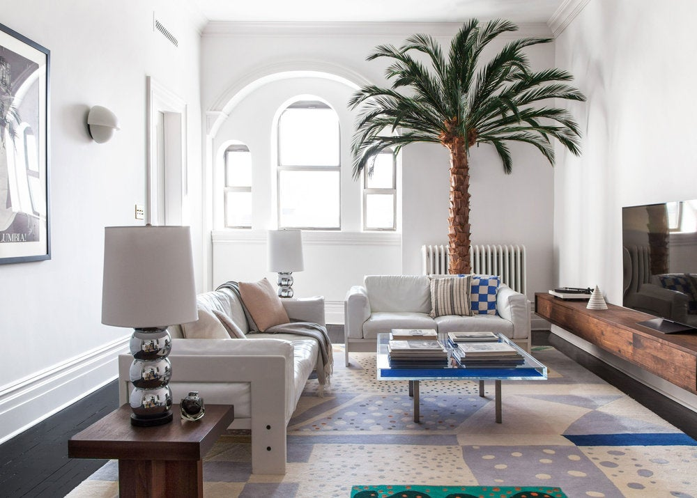 living room with palm tree and colorful rug