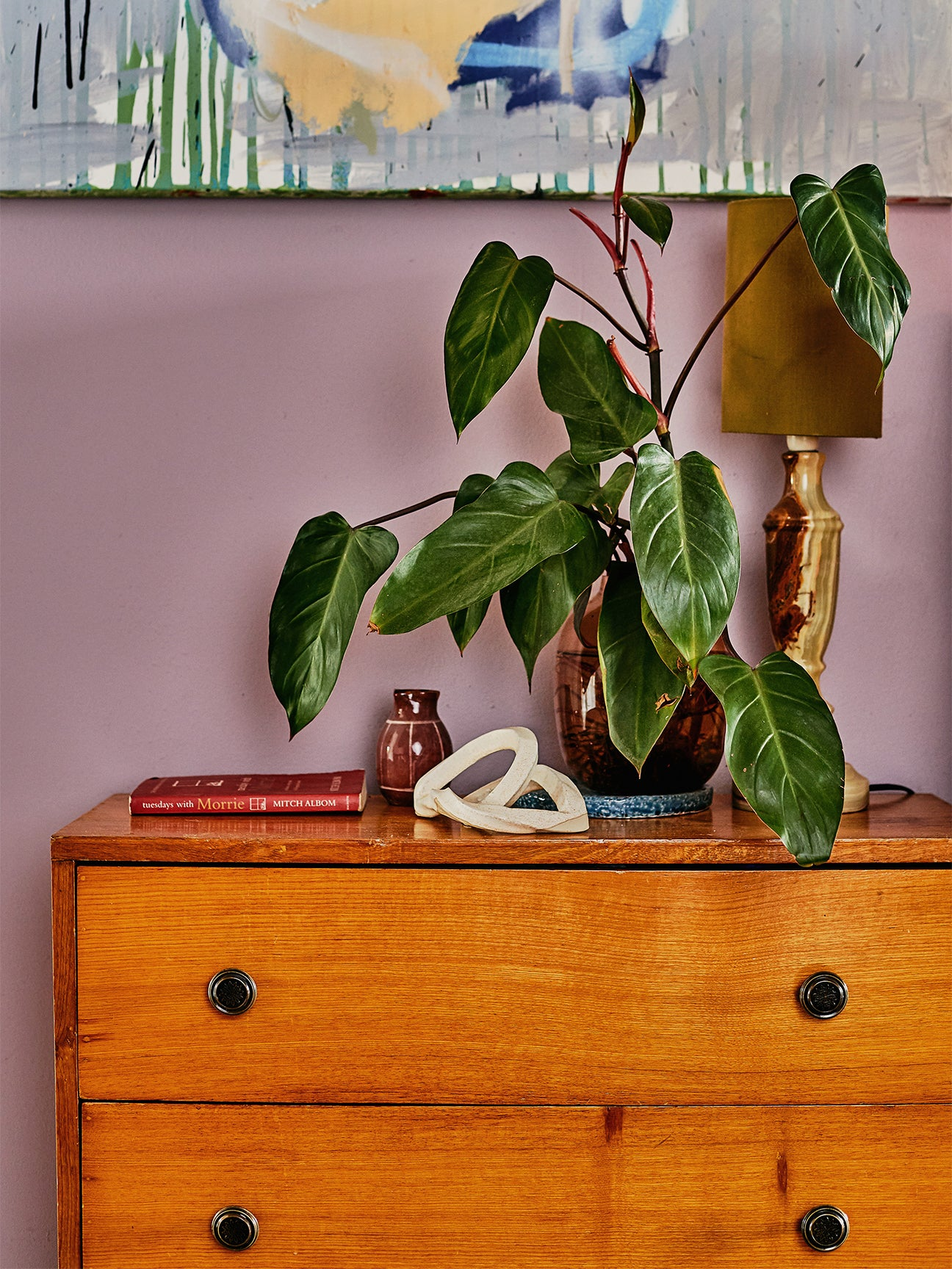 Plant on wooden dresser