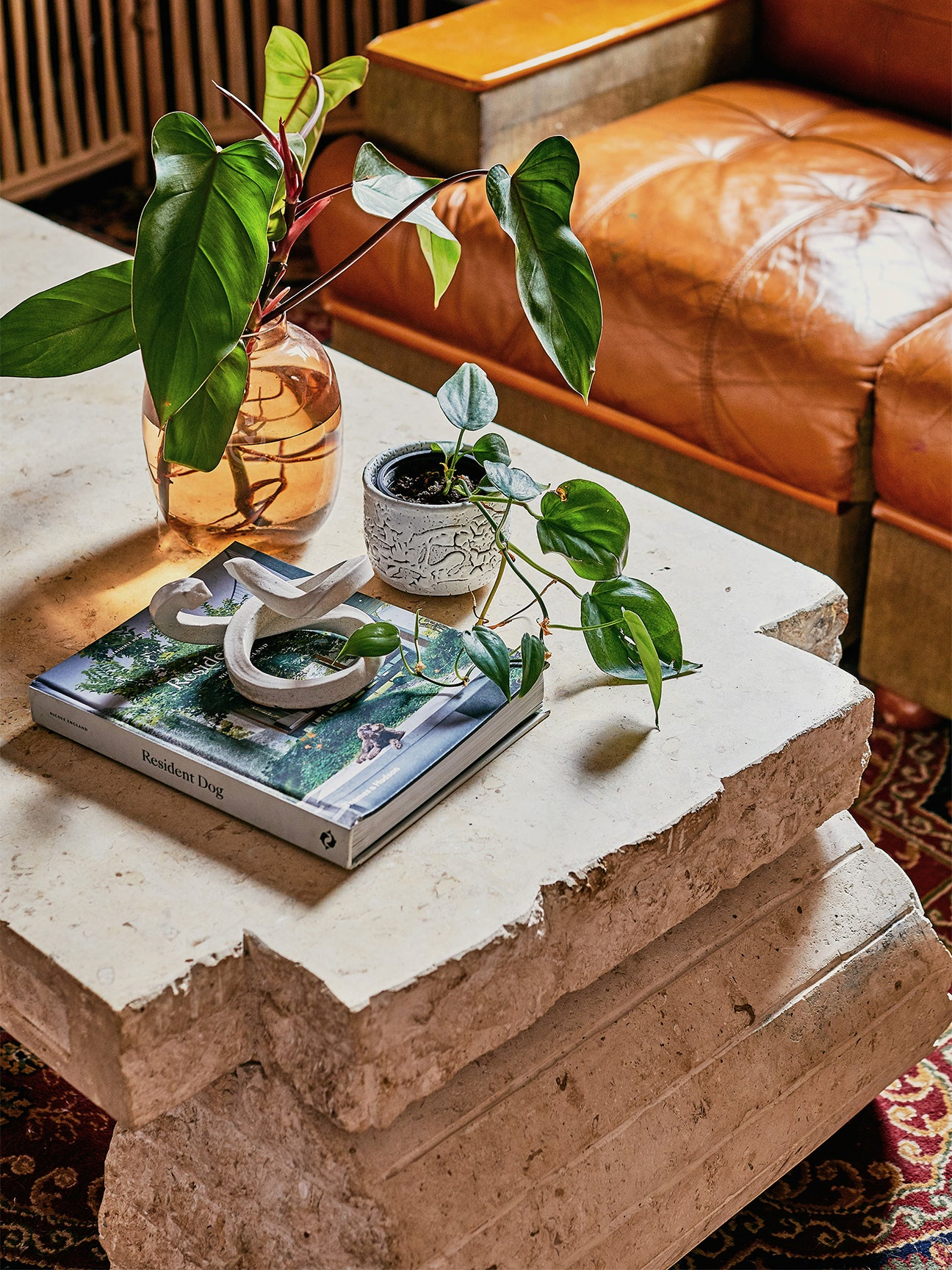 Travertine coffee table with books and plants