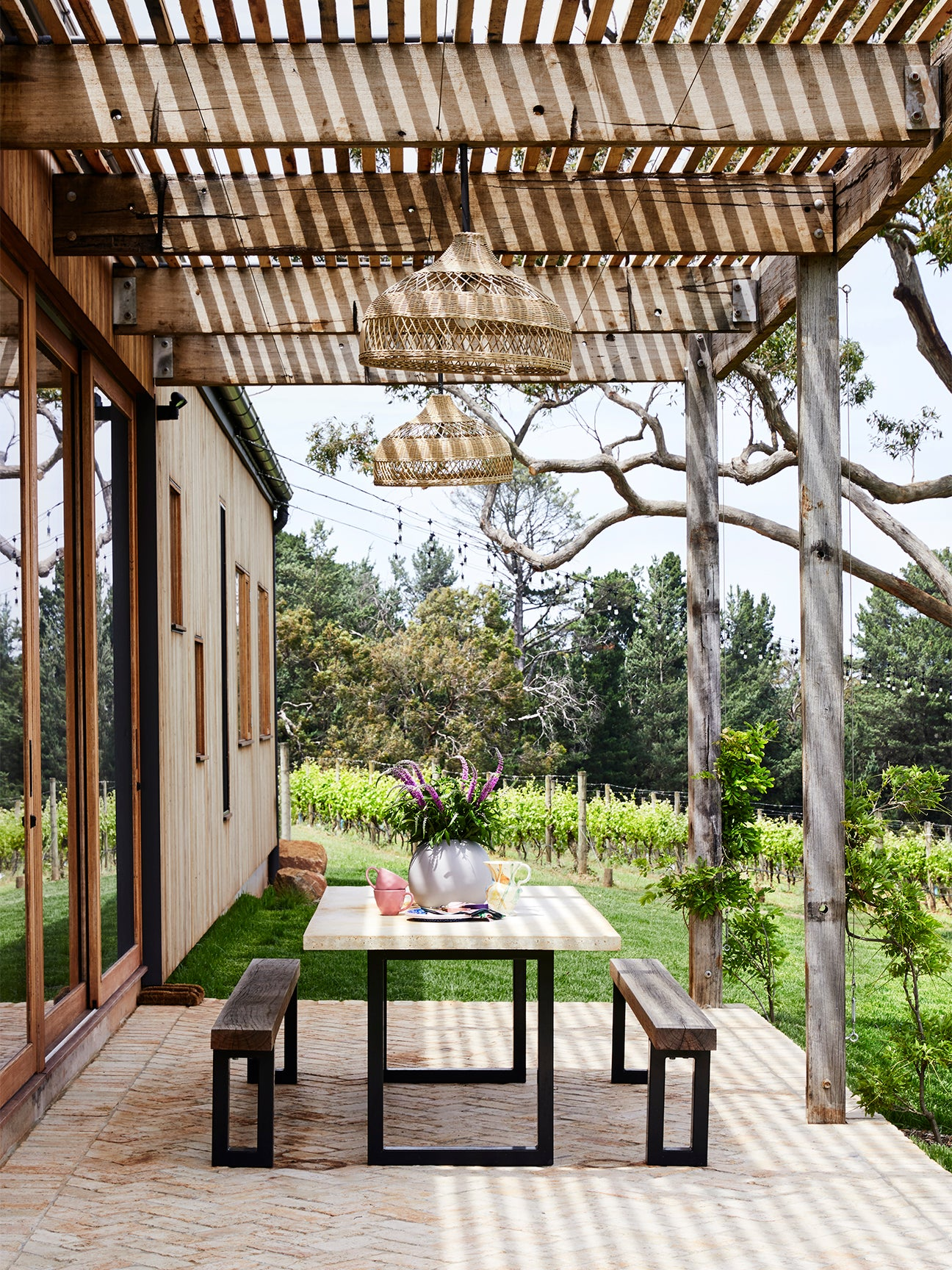 Outdoor dining on a vineyard