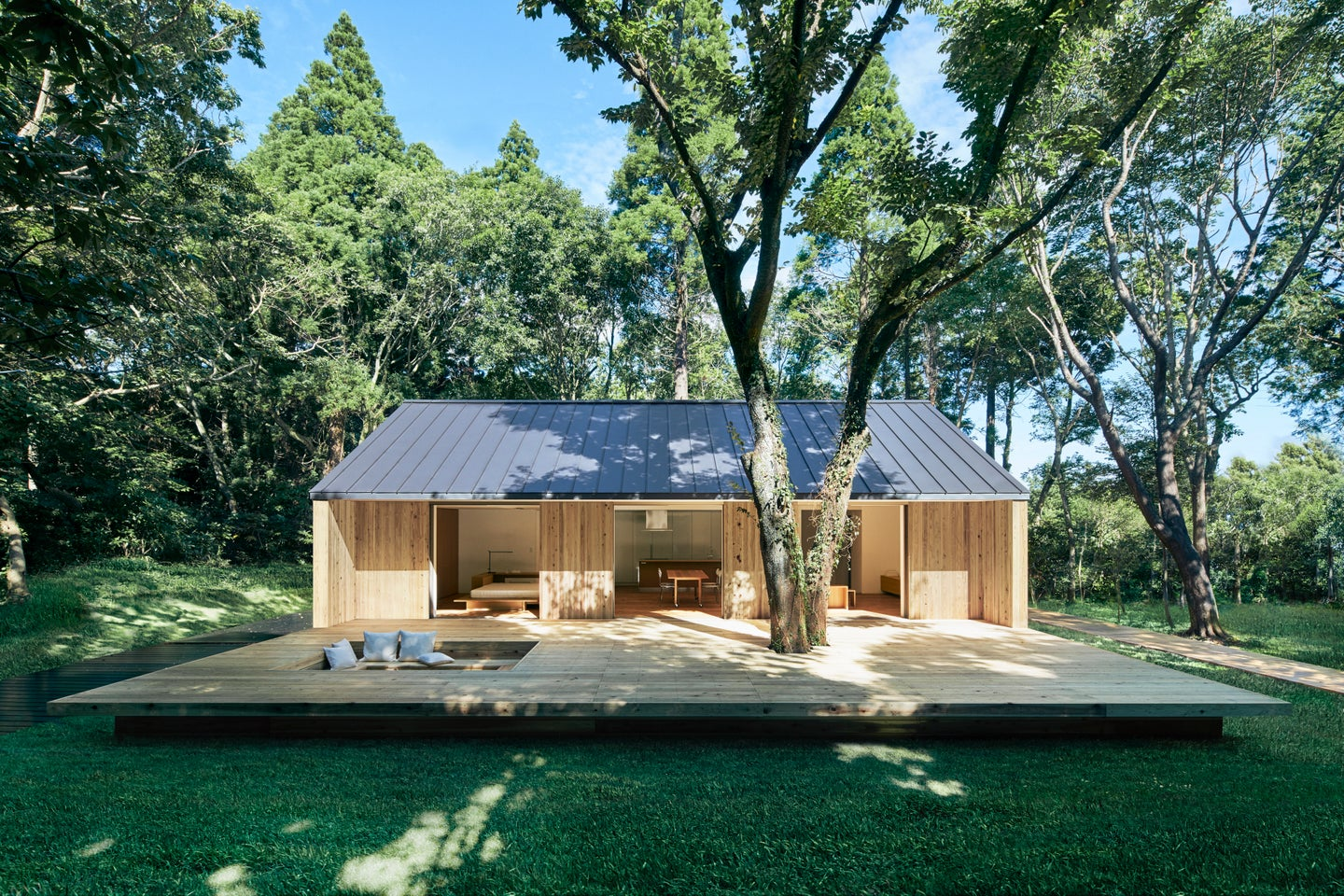 wood house in a forest