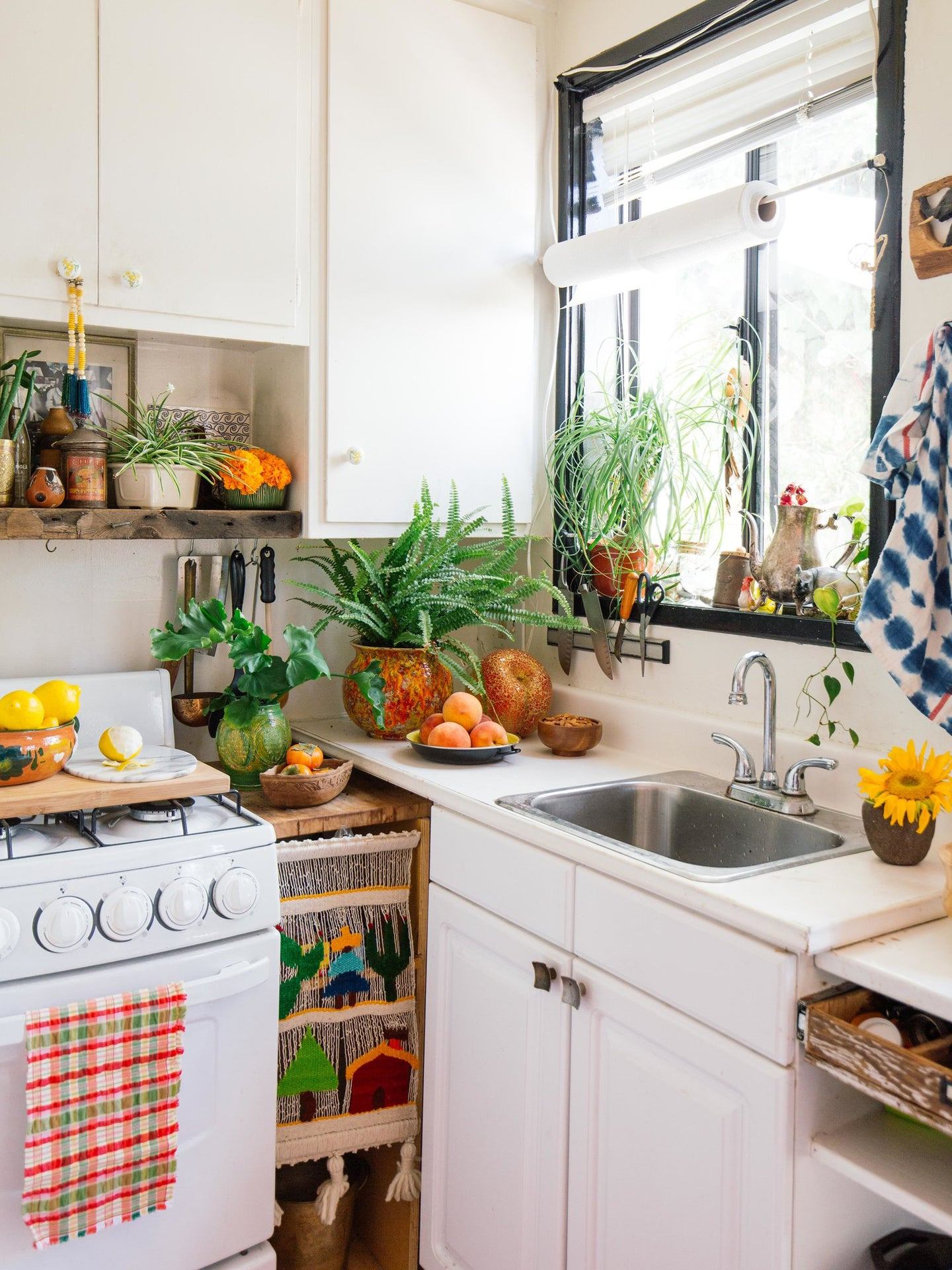 small white kitchen with lots of greenery