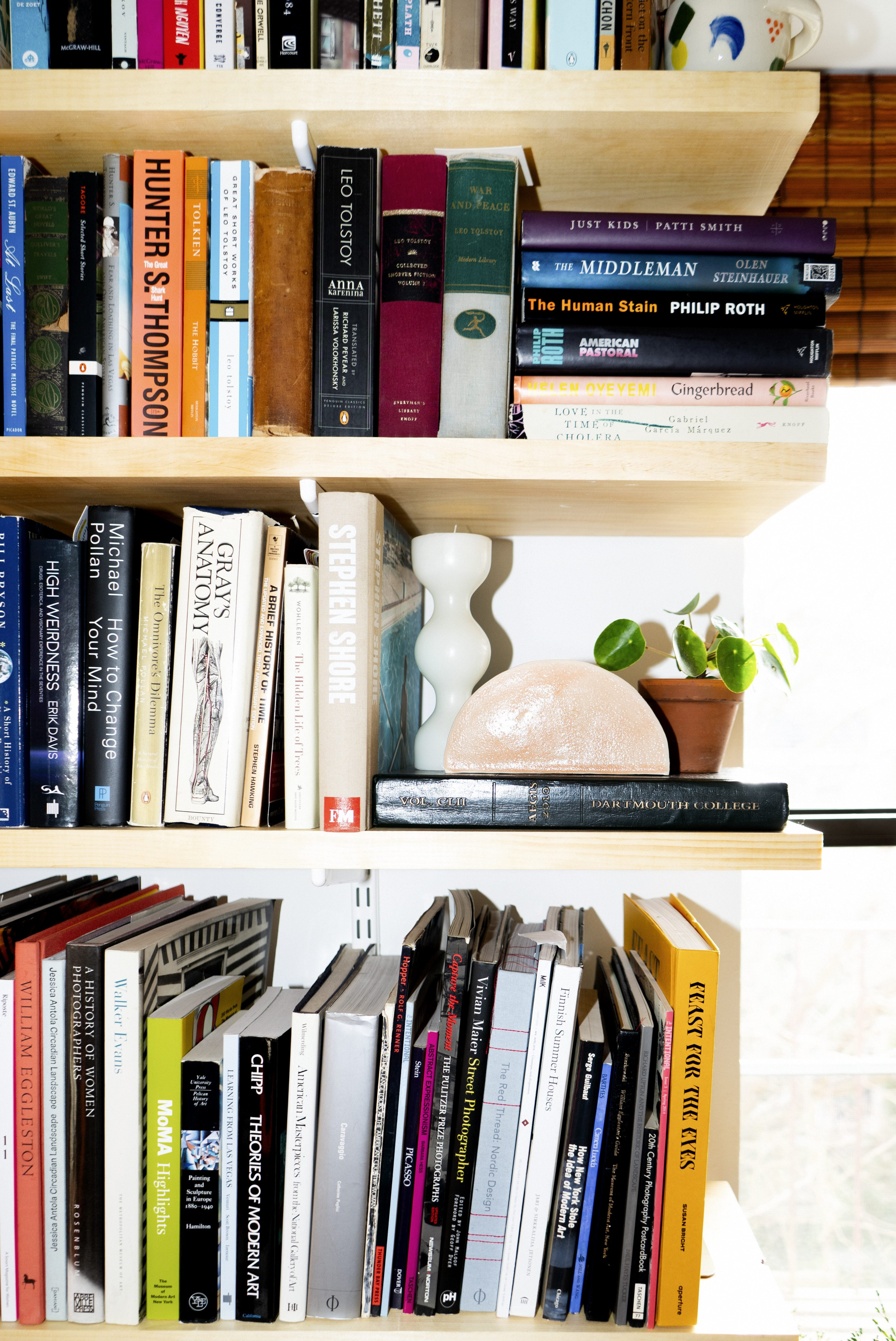 close up of bookshelves and a plant and squiggly vase
