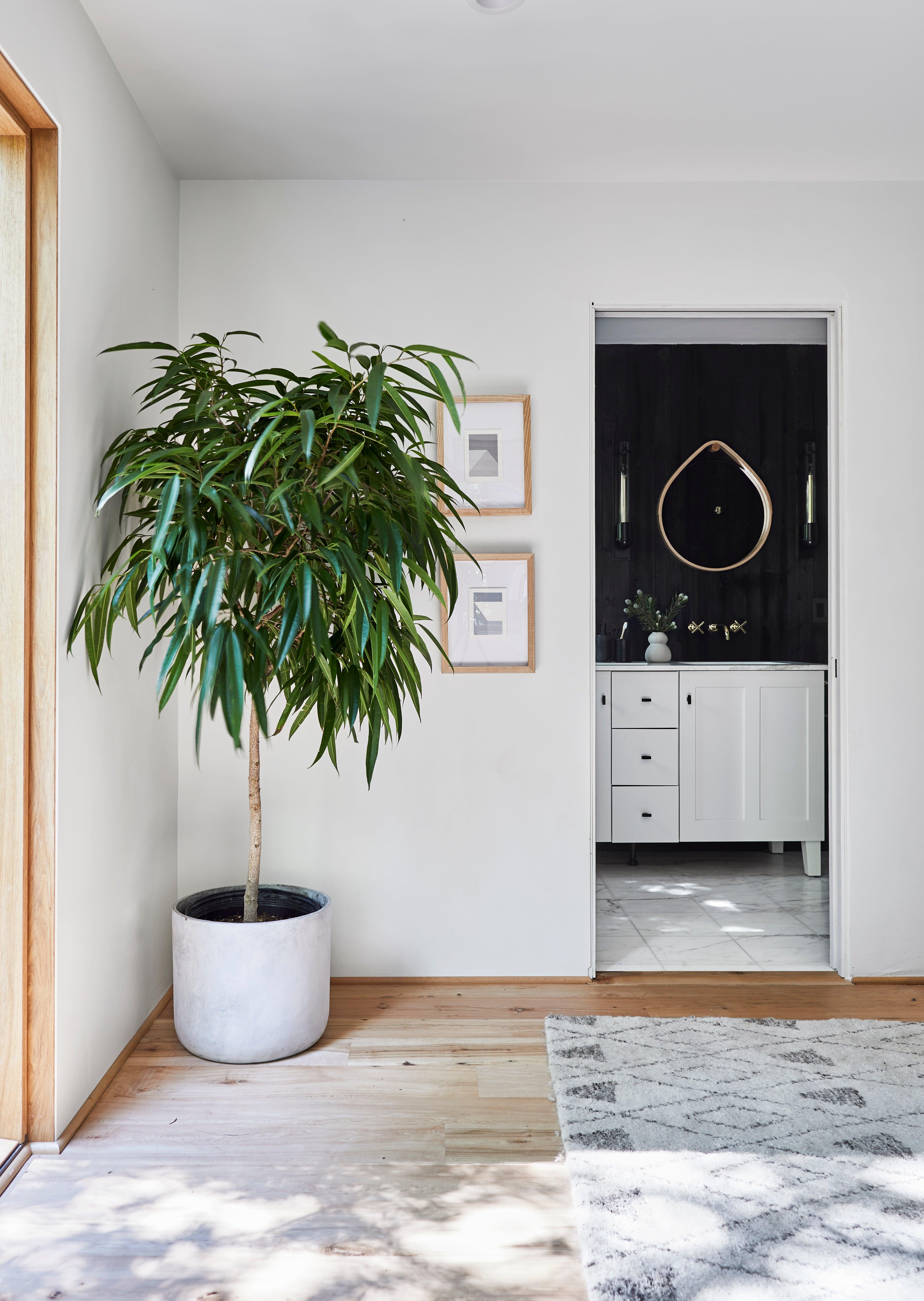 Design by Emily Henderson Design_Photo by Sara Ligorria-Tramp_Mountain House_7