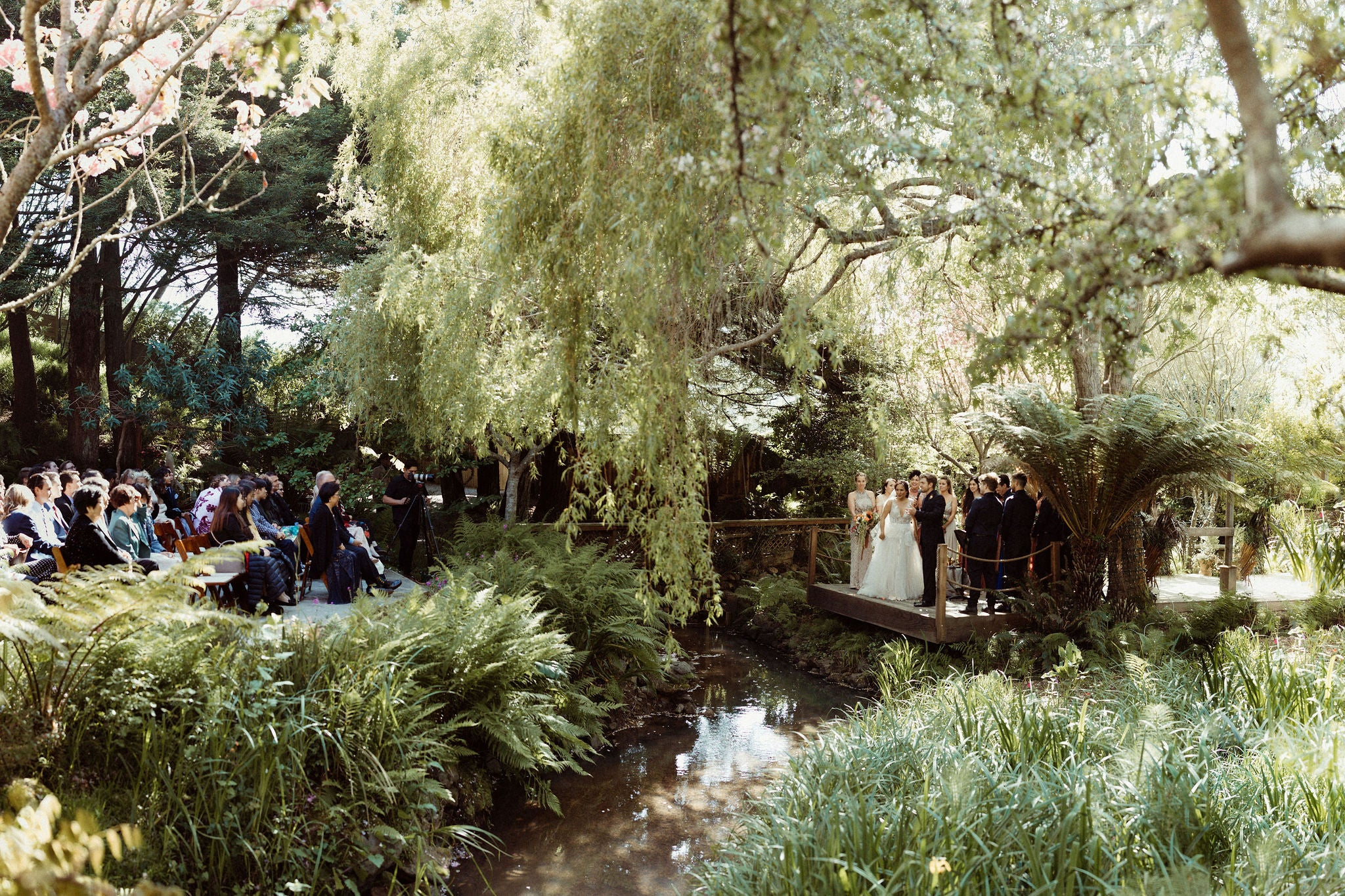 wedding couple in a forest on a platform