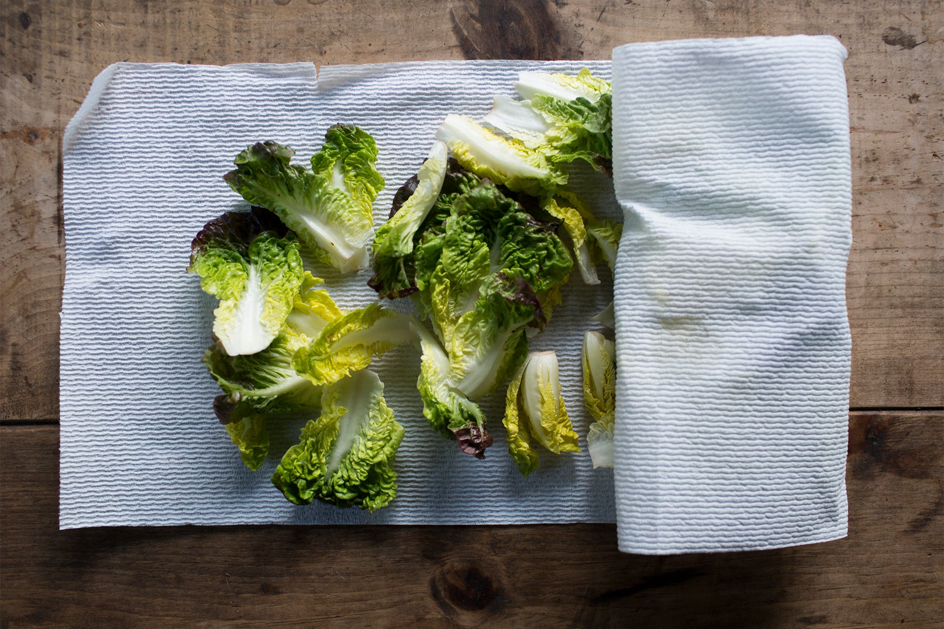 Lettuce on paper towels