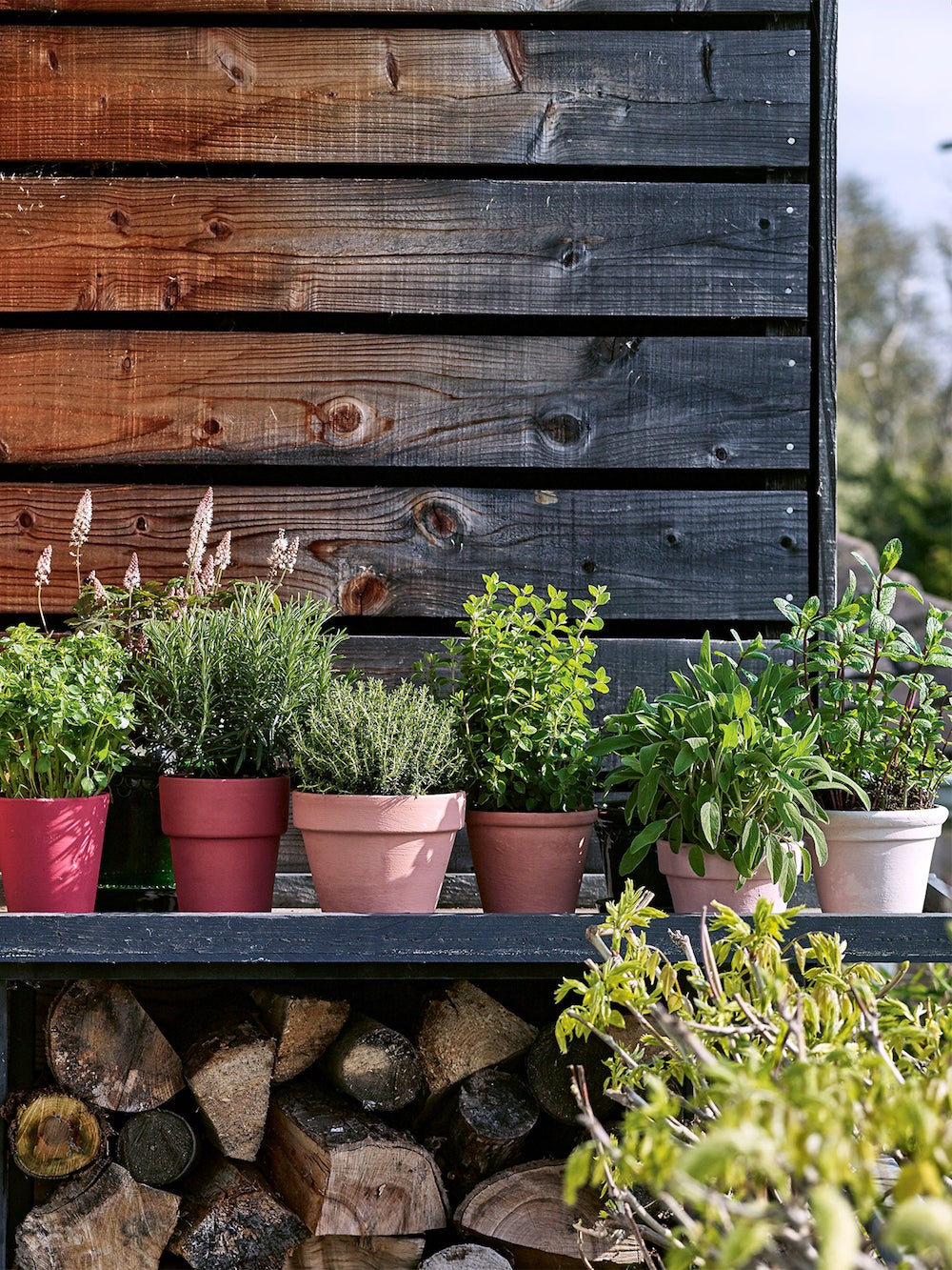 Modern-Container-Gardening-Ombre-Herb-Pots-photocredit-Nassima-Rothacker