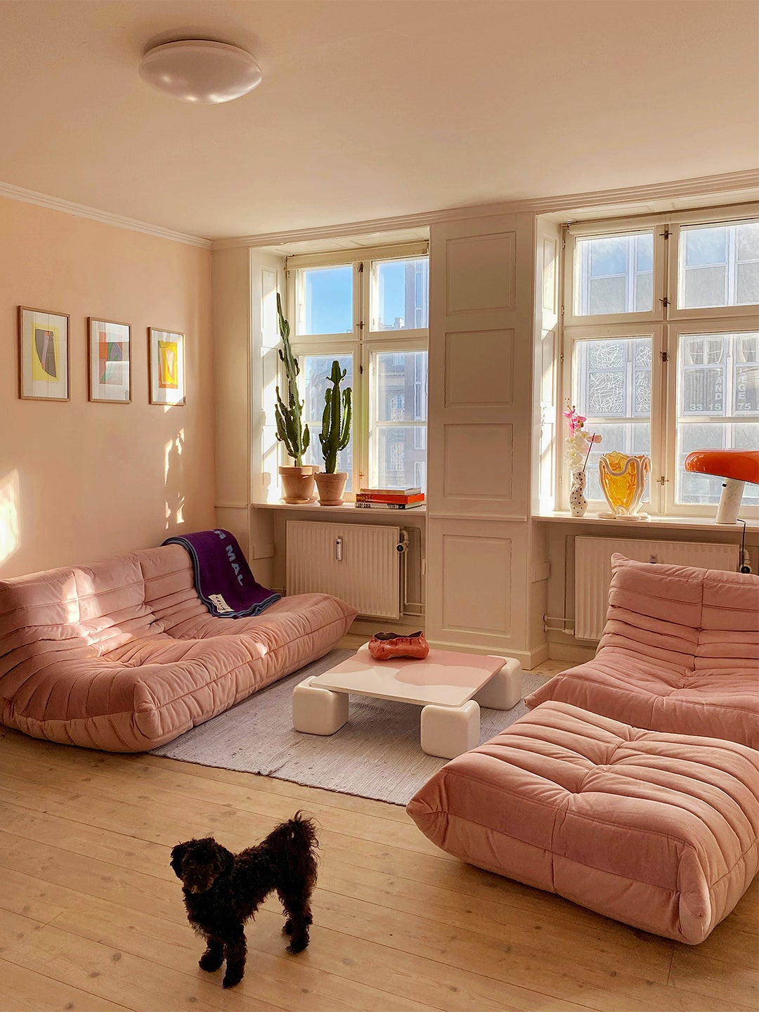 Living room with pink sofas