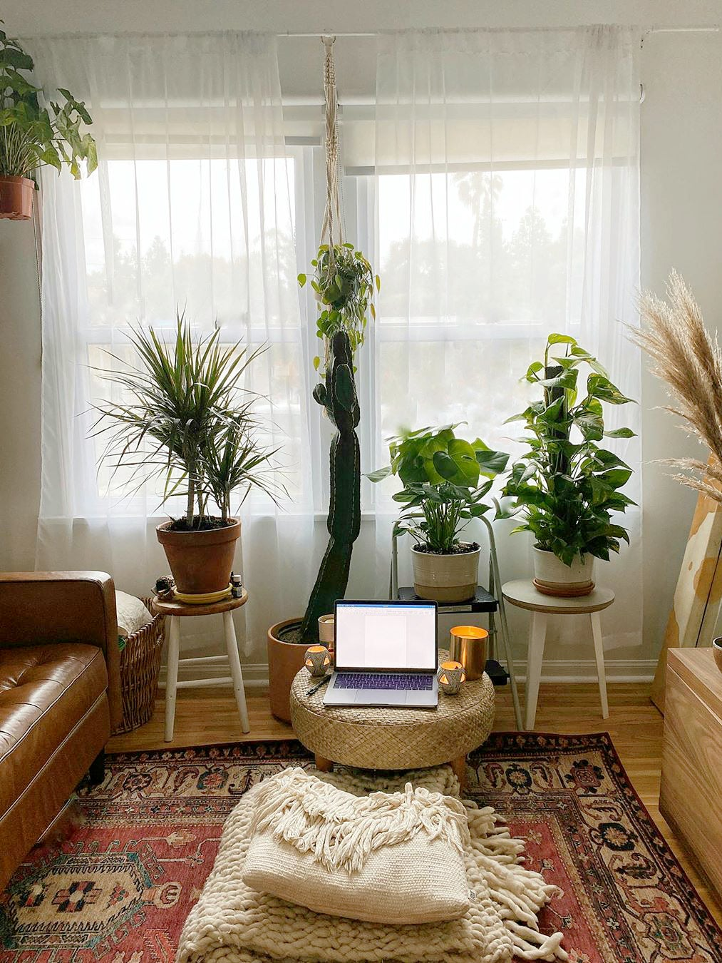 Pouf with laptop on it surrounded by plants