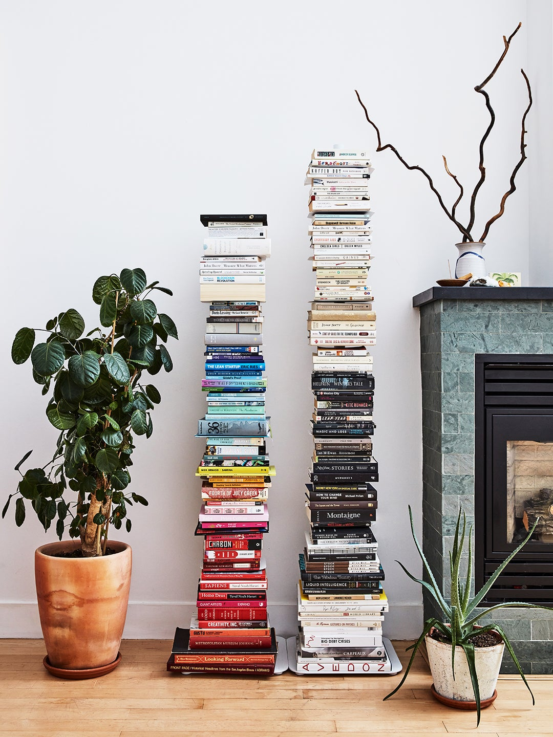 stack of color coded books next to plant