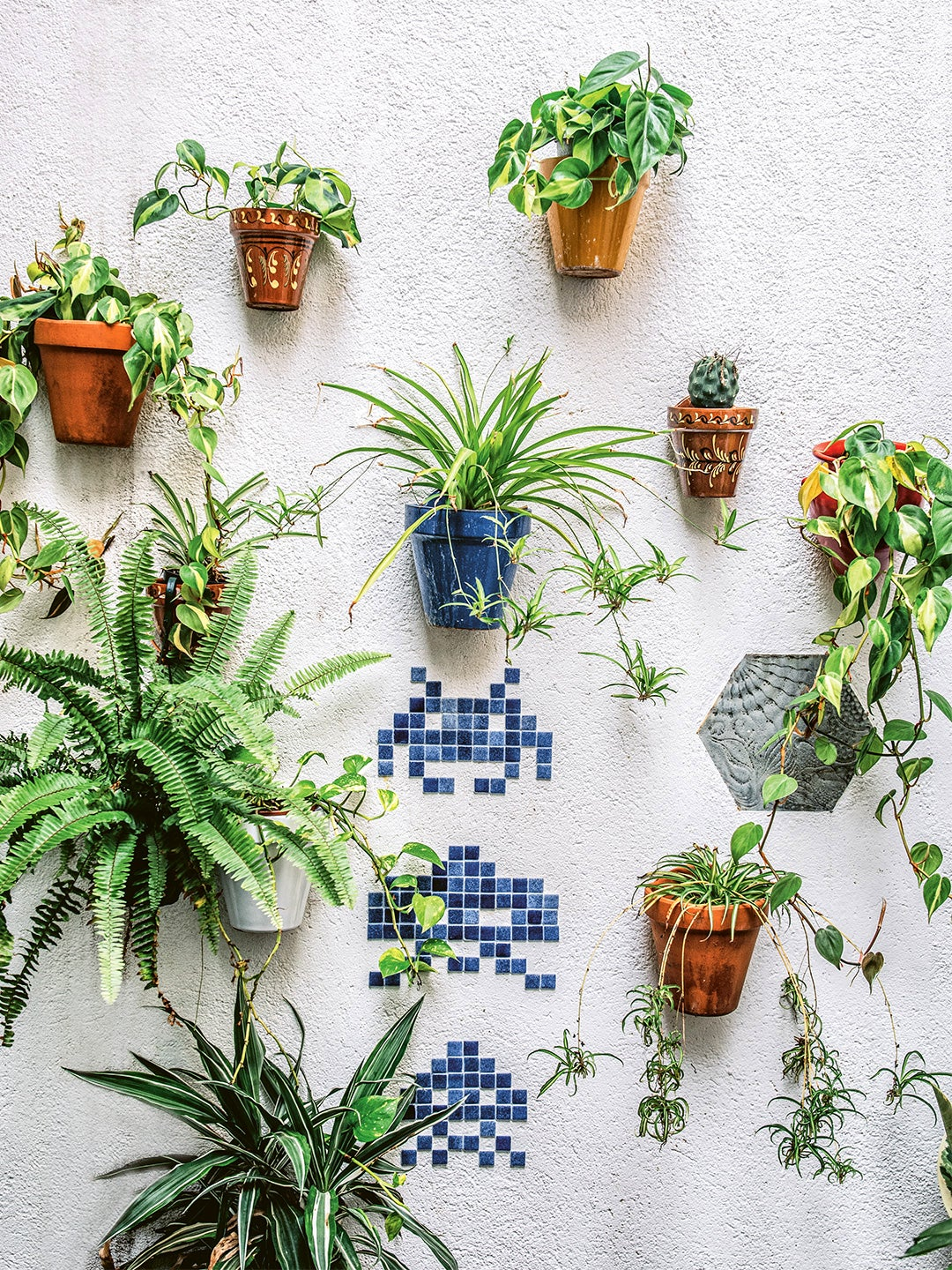 stone wall covered with mounted planters