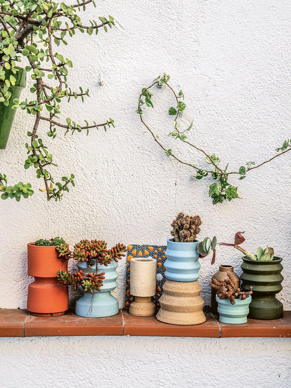 succulents in sculptural pots