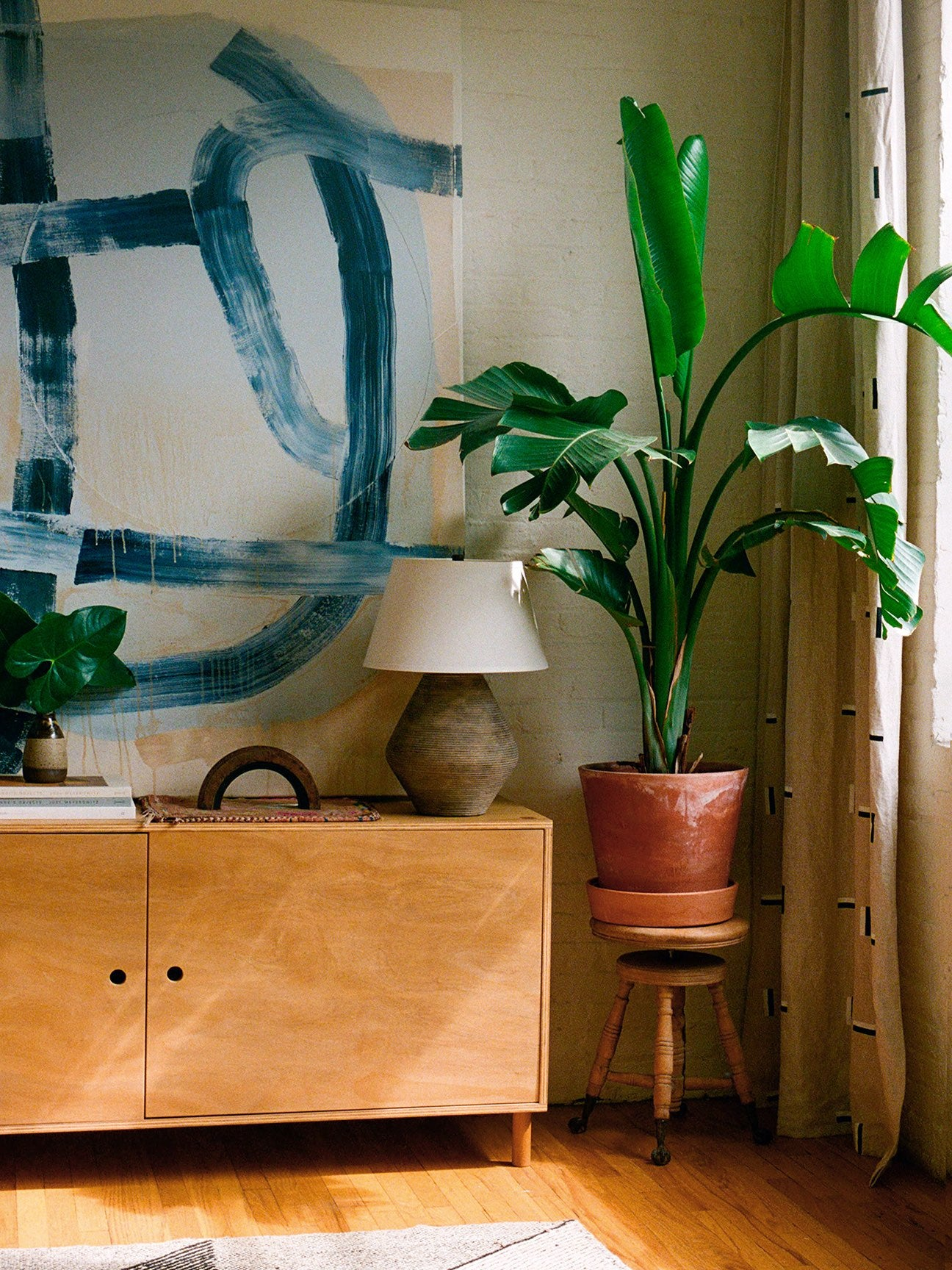 Corner of room with a plant