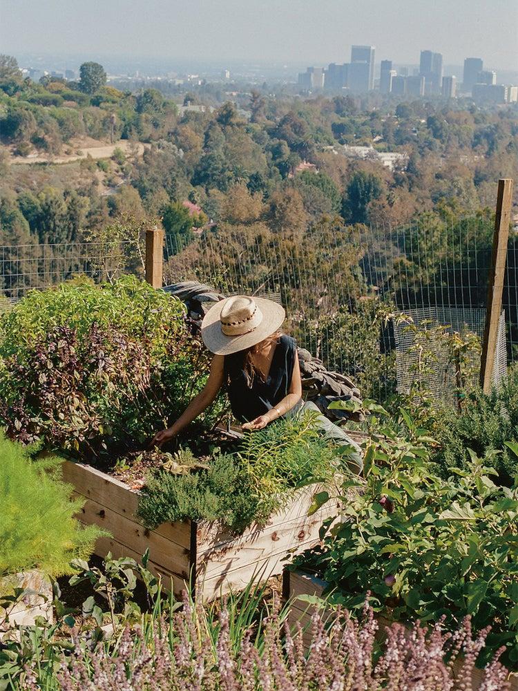 Lauri Kranz gardening in L.A.