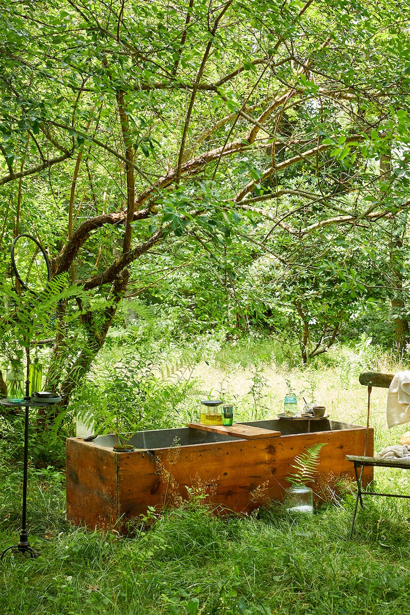 tub in a forest