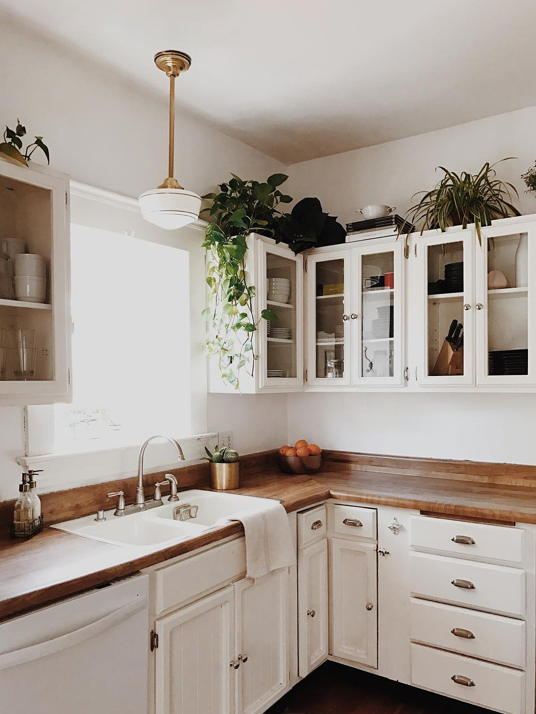 white kitchen with plants on cabinets